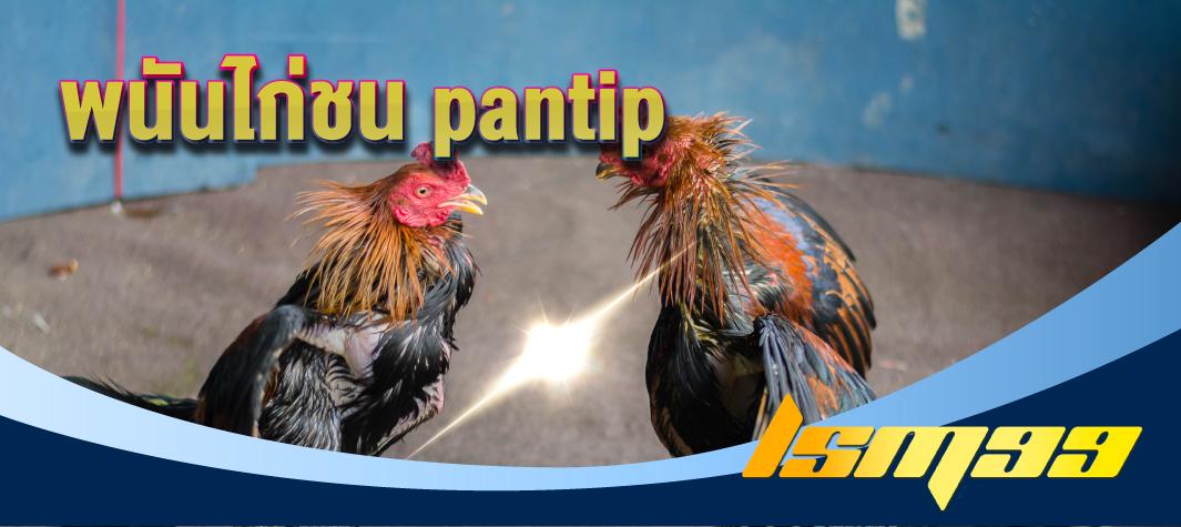 พนันไก่ชน pantip lsm99